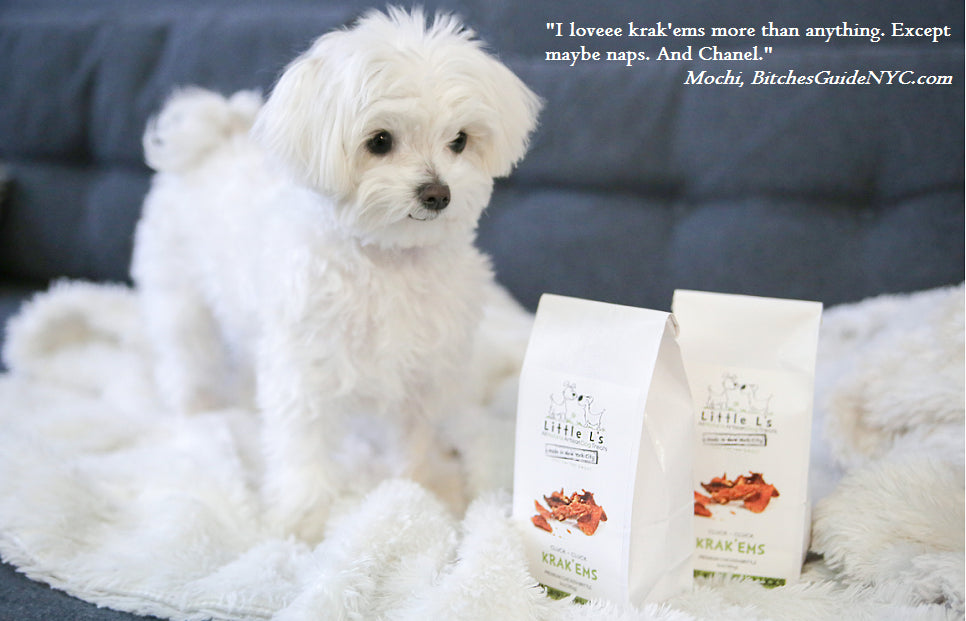 premium artisan turkey brittle for dogs