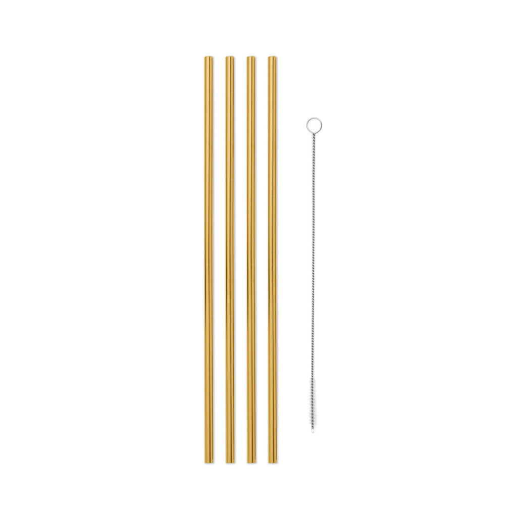 Porter Metal Straws 10in W/Cleaner (Set 4)
