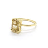 Natalie Marie Dotted Emerald Cut Solitaire Ring with Rutilated Quartz