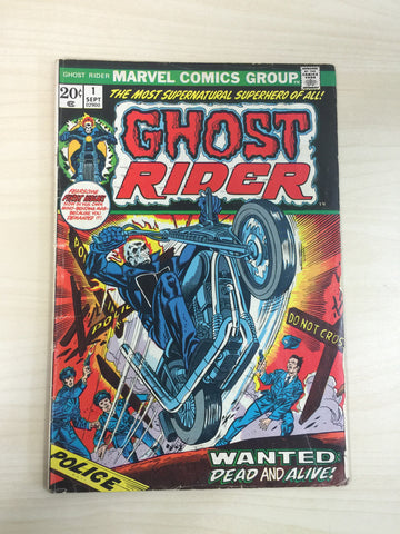 Ghost Rider Vol 2 #1 **First Appearance of Son of Satan***