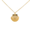 Gold Necklace With Large Scallop Shell Locket