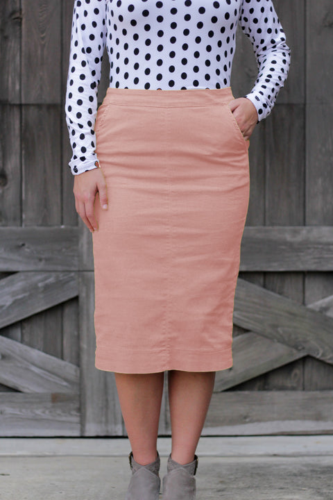 Blush Kara Flat Front Denim Skirt