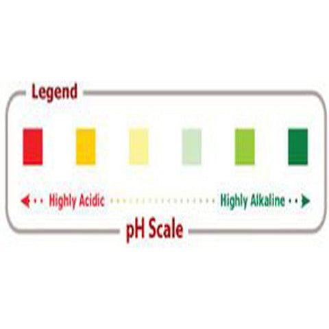 Acid Alkaline Food PH Chart