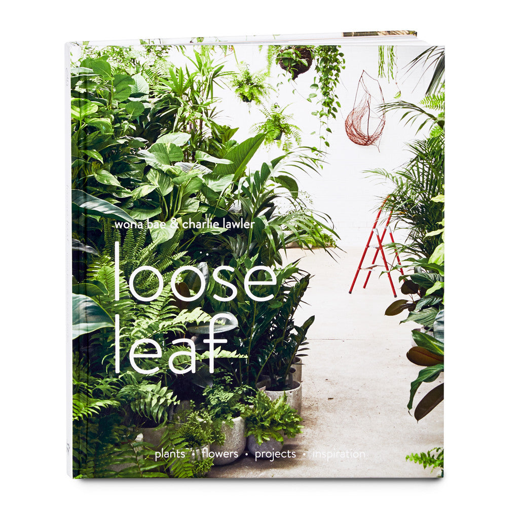 Loose Leaf  Flowers  u0026 Plants by Wona Bae  u0026 Charlie Lawler   Nathan + Jac