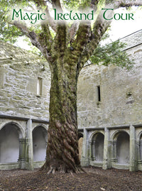 Magic Ireland Tour - Muckross Abbey in Killarney, Kerry, guided tours, Irish history, mythology, legend