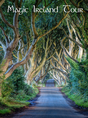 Magic Ireland Tour, Game of Thrones - Dark Hedges, Northern Ireland, Ancient East with Baba Studio
