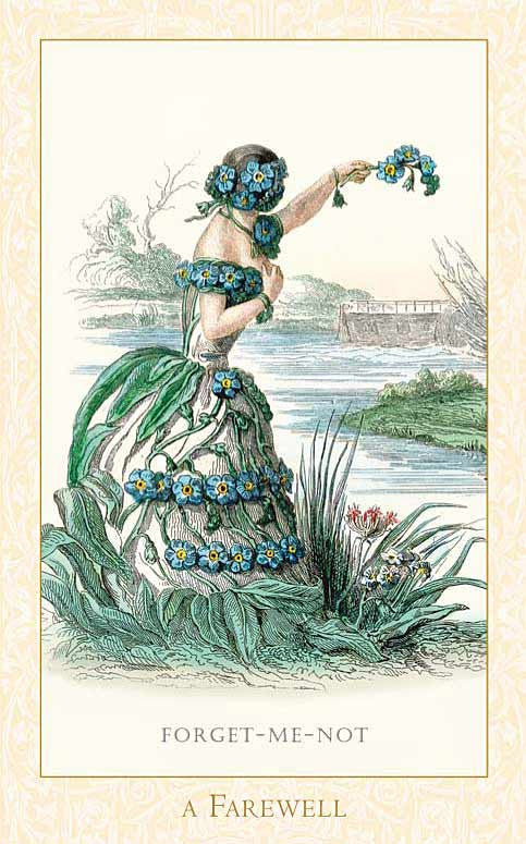 The Victorian Flower Oracle Deck - Baba Store - 9