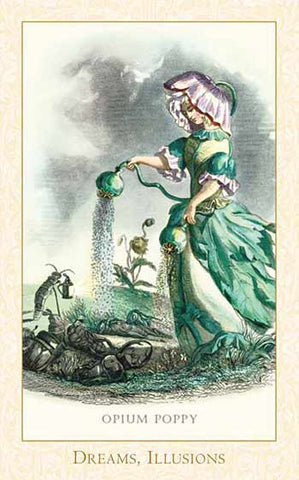 The Victorian Flower Oracle Deck