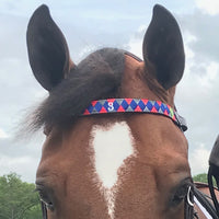 Boy O Boy Bridleworks USHJA Zone 3 Jumper Team  Polo Finish Browband horse