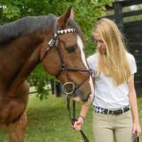 Boy O Boy Bridleworks Straight Traditional Finish Browband with Coordinating Stirrup Buckle Belt