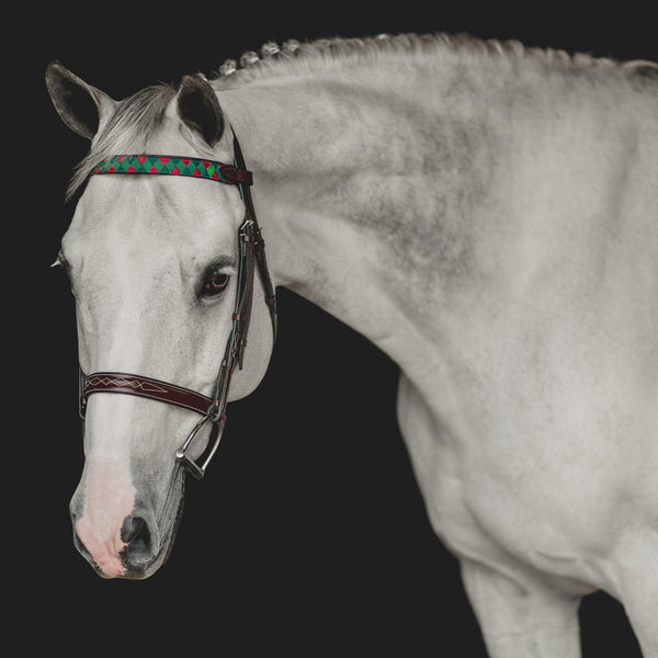 Custom Straight Traditional Finish Browband
