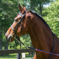 Boy O Boy Bridleworks Custom Show Lead