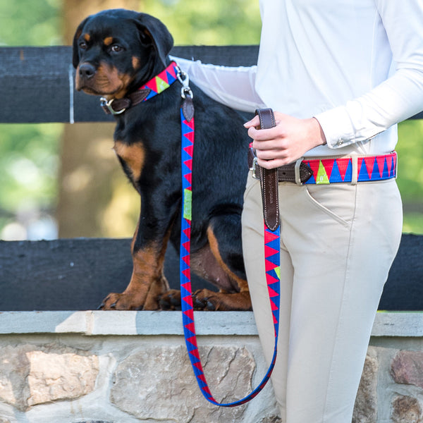 Boy O Boy Bridleworks Custom Coupling Leash