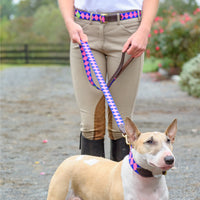 Boy O Boy Bridleworks Ready to Ship Old Favorites Dog Leash