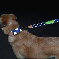Boy O Boy Bridleworks REFLECTIVE Ready-to Ship Dog Leash and Collar