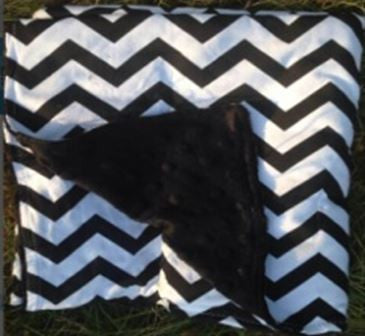 Black Chevron Black Minky Blanket