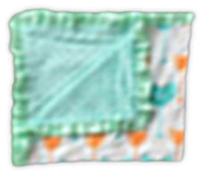 Teal Salmon Arrow Minky Blanket