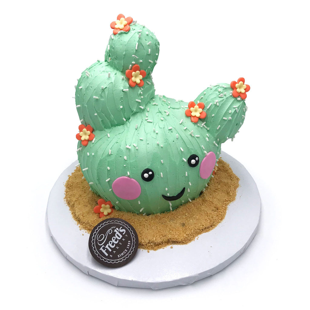 Cutie Cactus Cake Decorating Class for Kids Event Freed's Bakery