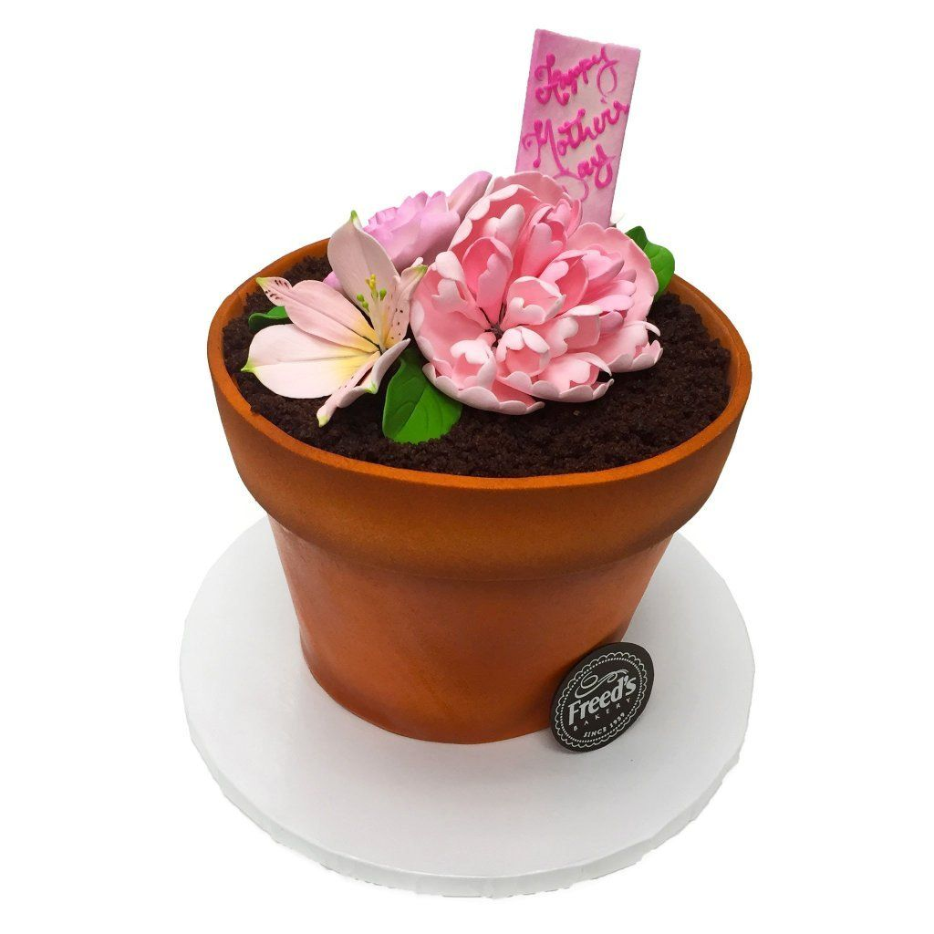 Flower Pot for Mom Mother's Day Freed's Bakery