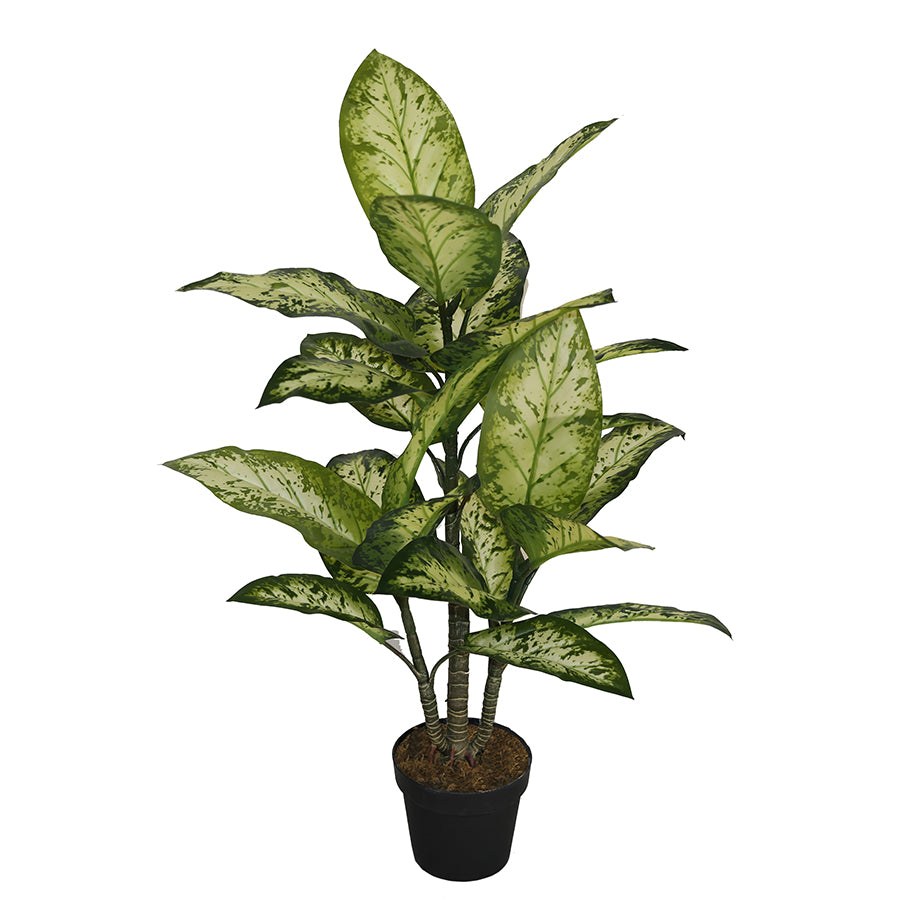 New Potted Faux Dumb Cane Plant Artificial Succulent Green Home Realistic