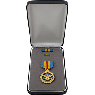 Military medal sets air force usamm for Air force decoration for exceptional civilian service