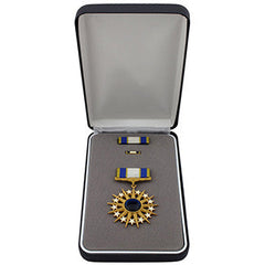 Air Force Distinguished Service Medal Set