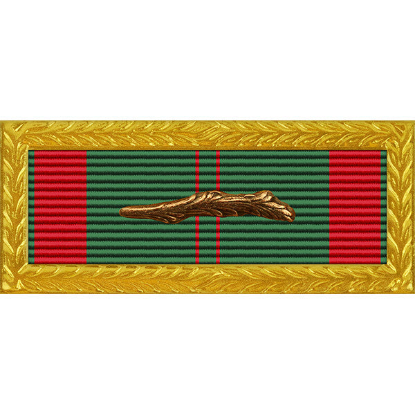 Republic of Vietnam (RVN) Civil Action 1C Palm Unit Citation - Thin Ribbon - Army Frame