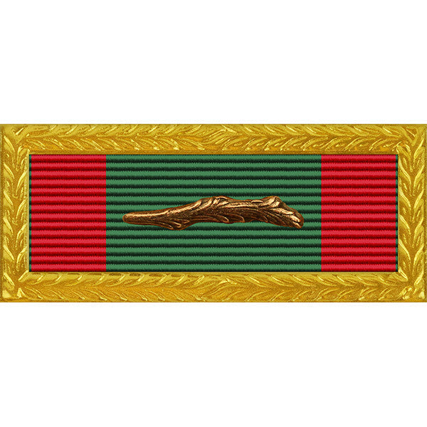 Republic of Vietnam (RVN) Civil Action 2C Palm Unit Citation - Thin Ribbon - Army Frame
