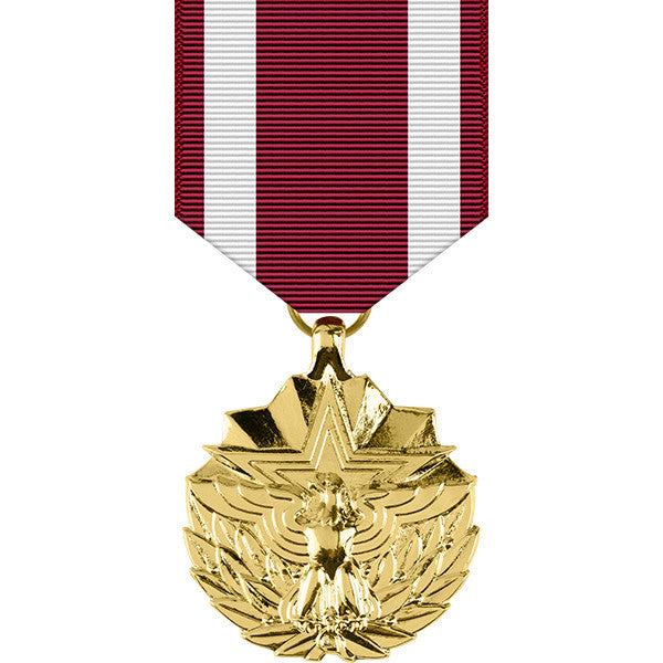 Meritorious Service Anodized Medal