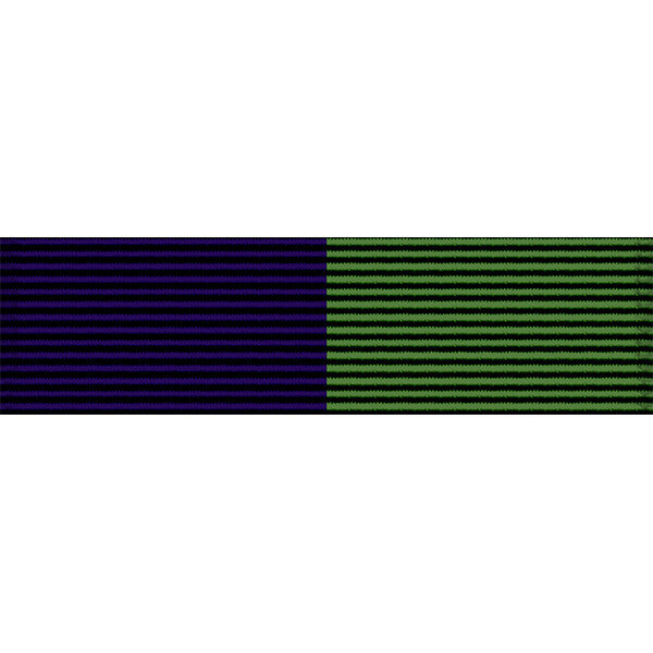 Arizona National Guard Community Service Ribbon