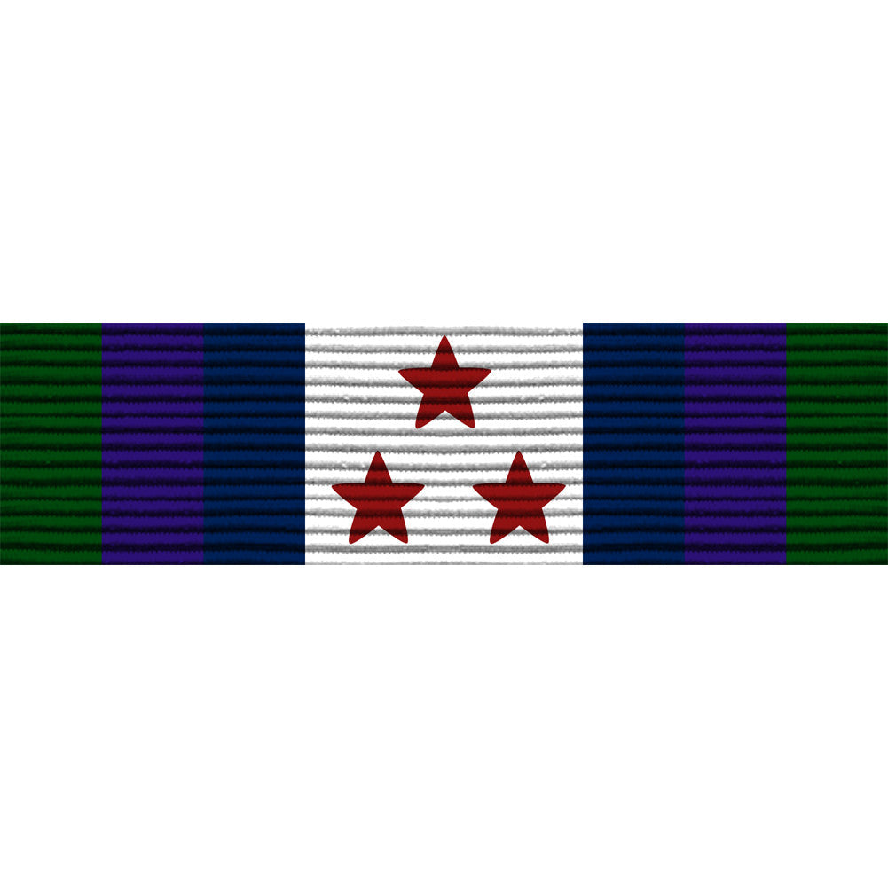 Washington D.C. National Guard Homeland Defense Ribbon