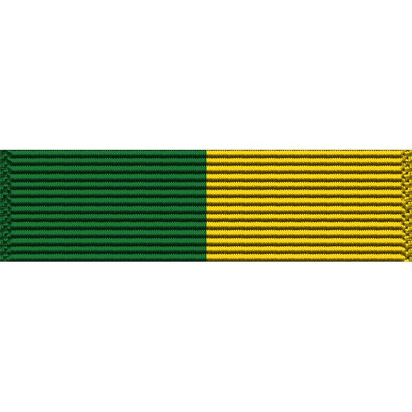 Vermont National Guard State Special Duty Thin Ribbon