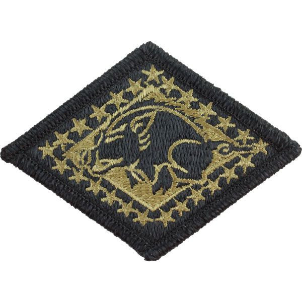 Arkansas National Guard MultiCam (OCP) Patch