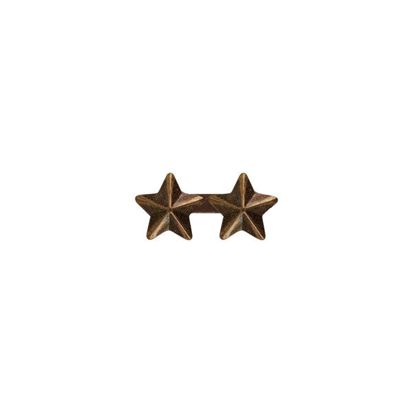 Prongless Double Bronze Star Device
