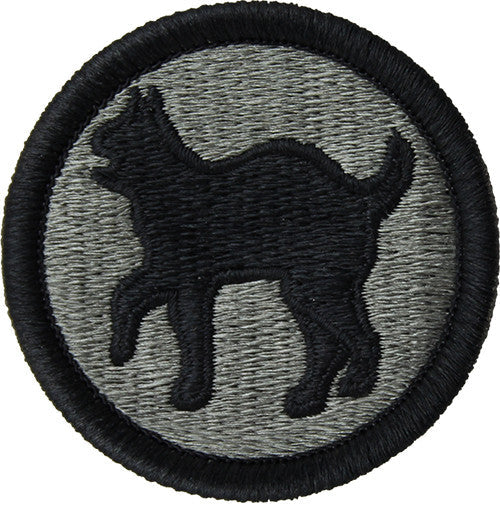 81st Army Regional Support Command ACU Patch