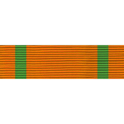 Florida National Guard Service Thin Ribbon