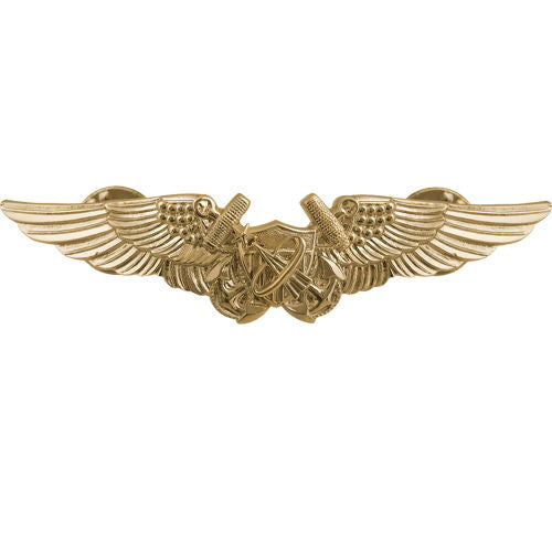 Navy Naval Astronaut Naval Flight Officer Insignia