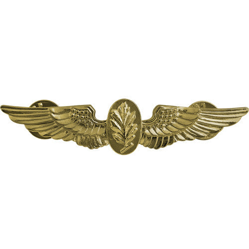 Navy Experimental Psychologist / Aviation Physiologist Insignia