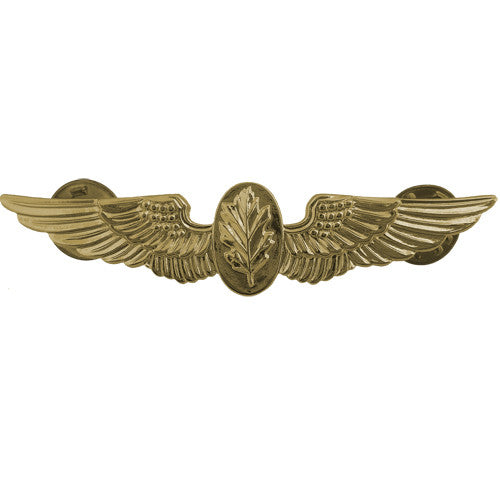 Navy Naval Flight Nurse Insignia
