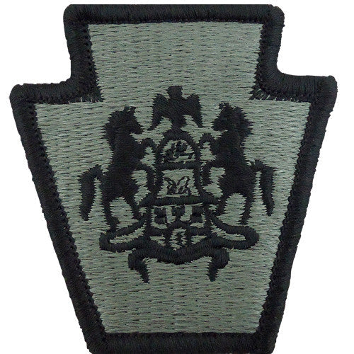 Pennsylvania National Guard ACU Patch