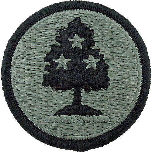 Tennessee National Guard Acu Patch Usamm