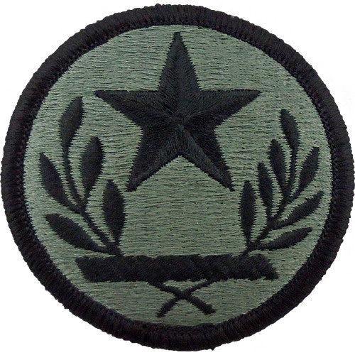 Texas National Guard ACU Patch