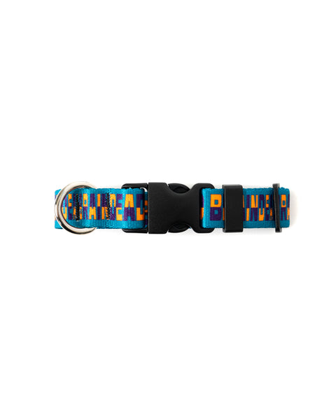 Checkered Boneman Dog Collar - Teal