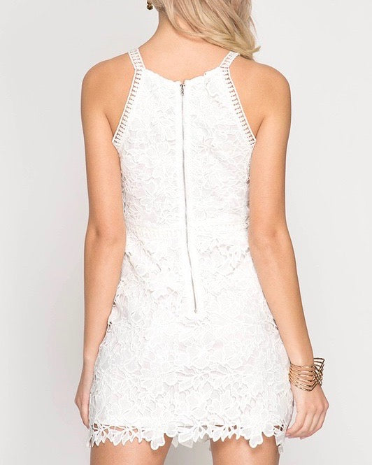 Ashlyn Sleeveless Lace Bodycon Dress in Off White