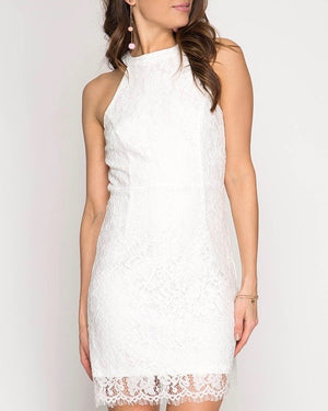 sleeveless lace fitted bodycon mini dress - more colors