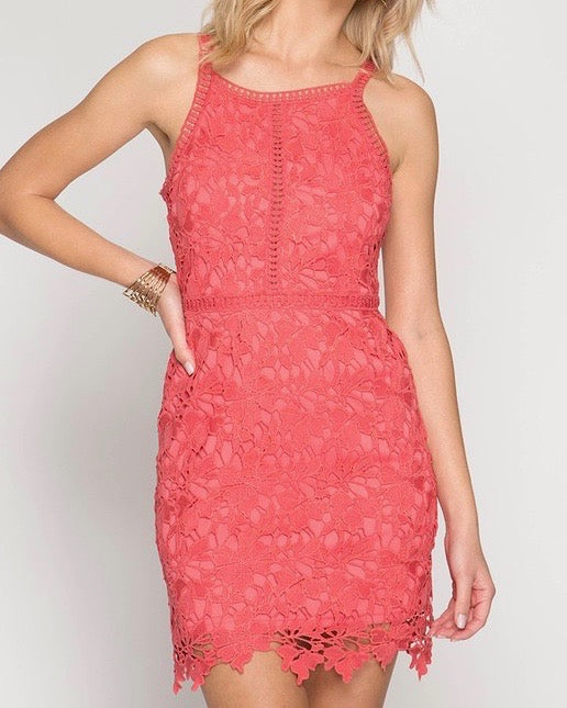 Ashlyn Sleeveless Lace Bodycon Dress in Coral
