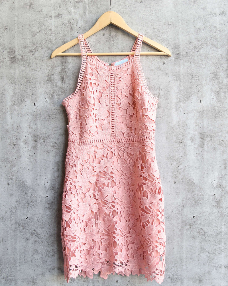 Ashlyn Sleeveless Lace Bodycon Dress in Rose