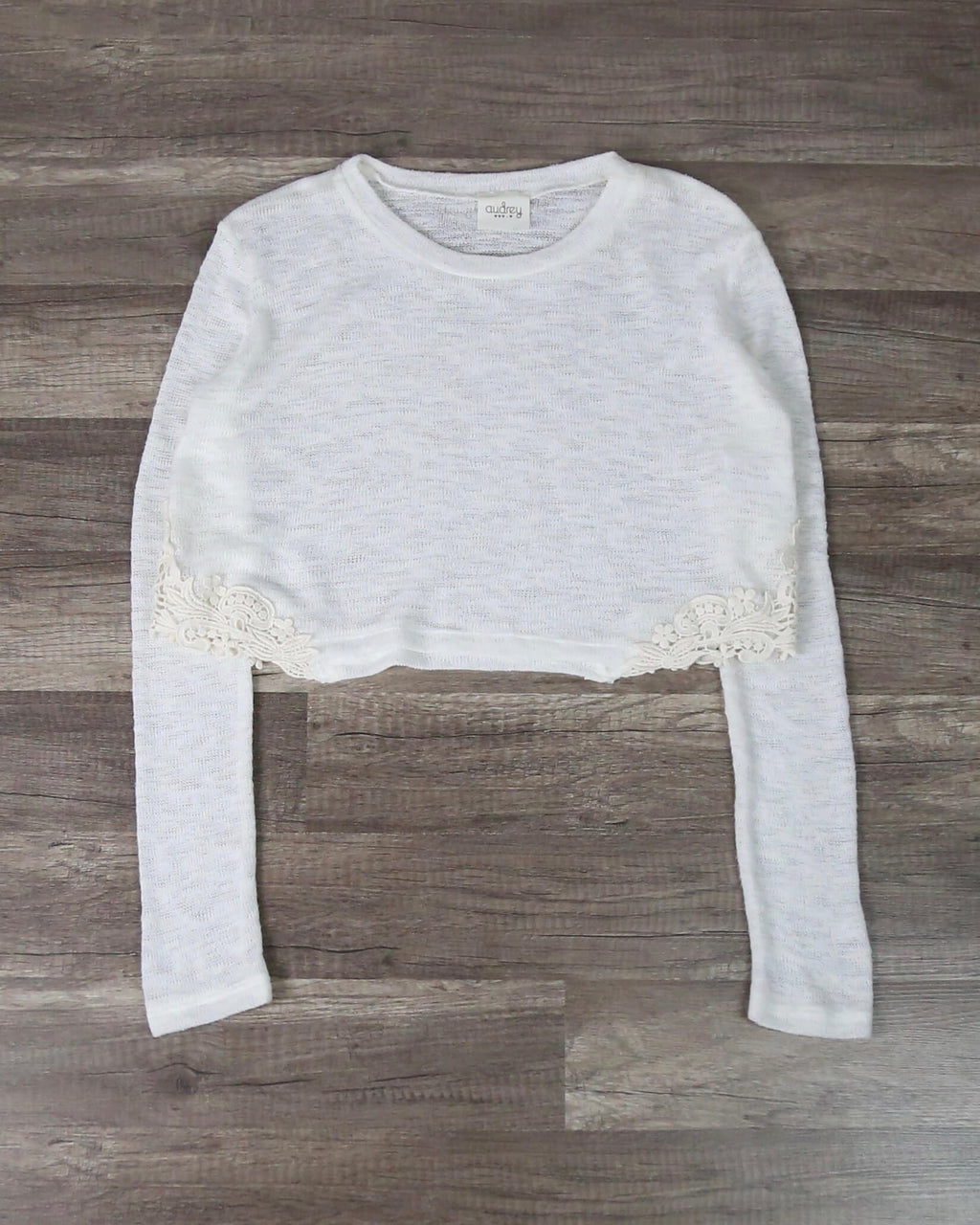 FINAL SALE - Knit Lace Embroidered Hem Crop Top in White
