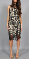 Lioness - Loves Divine Midi Lace Overlay Midi Dress - Black - shophearts - 1