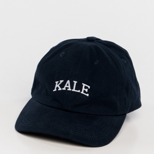 sub_urban riot - kale dad hat -  navy - shophearts